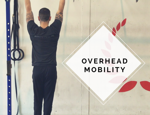 Overhead Mobility Drills